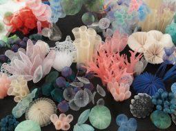 kusumoto textiles traslucidos