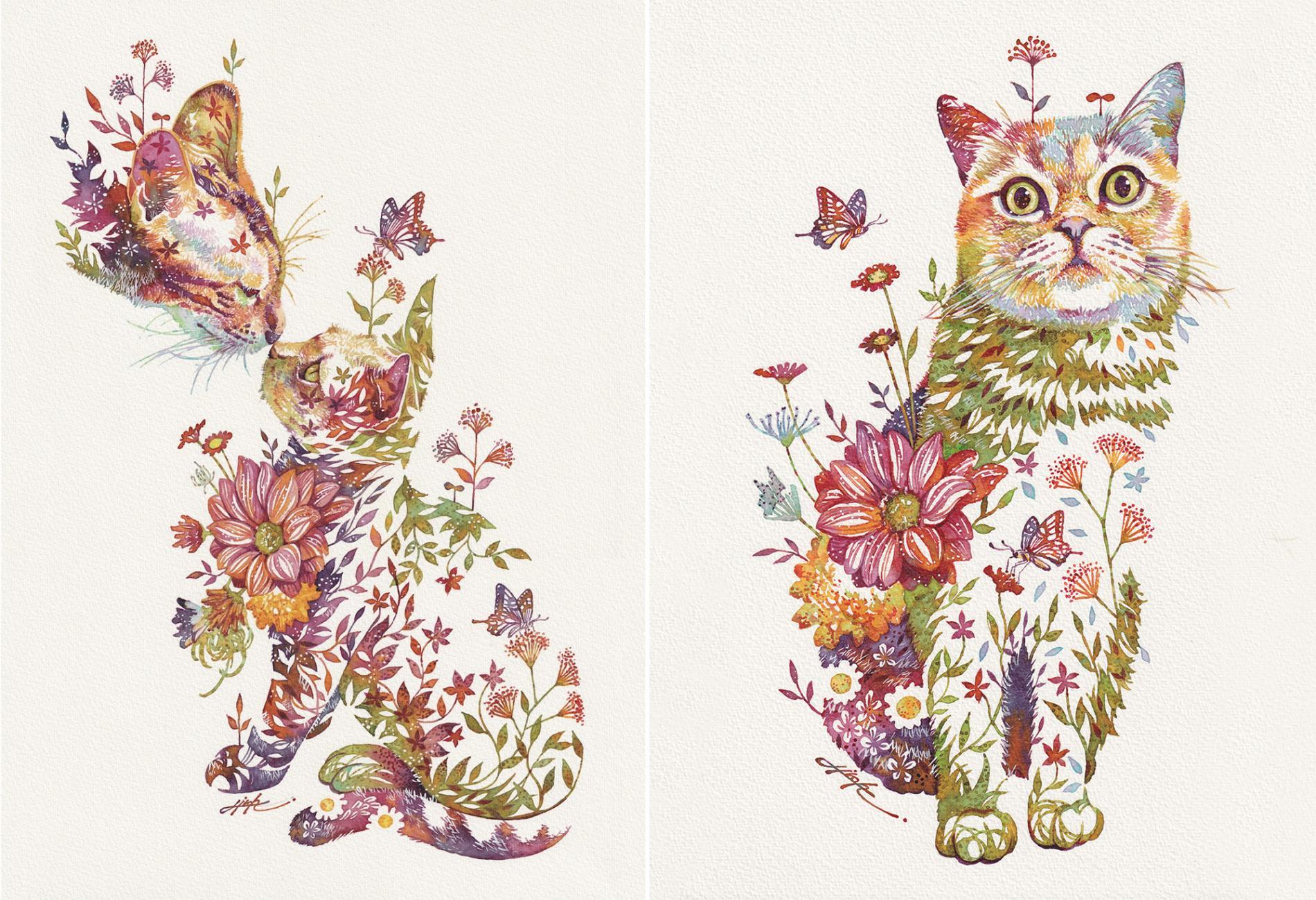 takeda gato floral 3