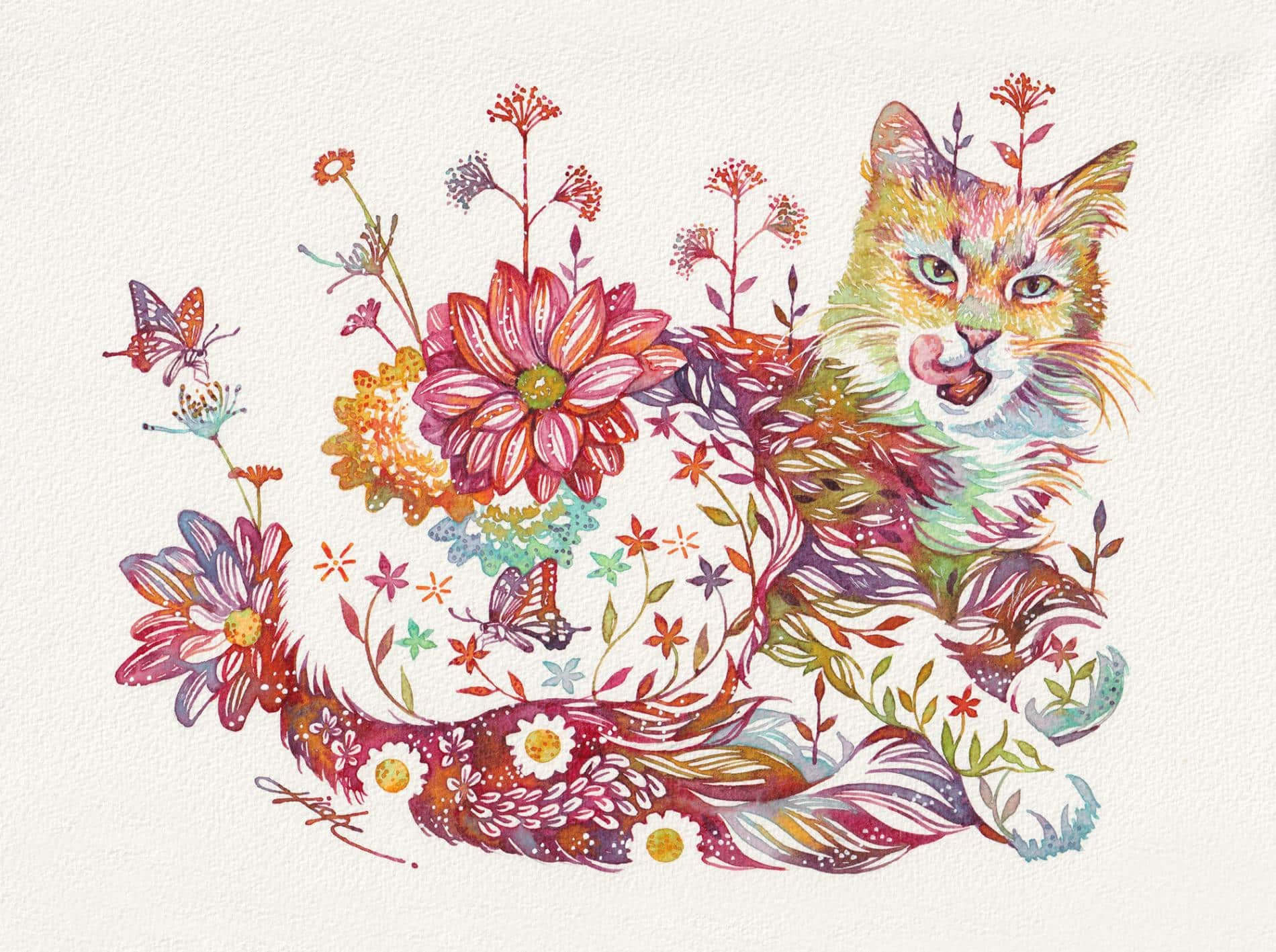 takeda gato floral 4