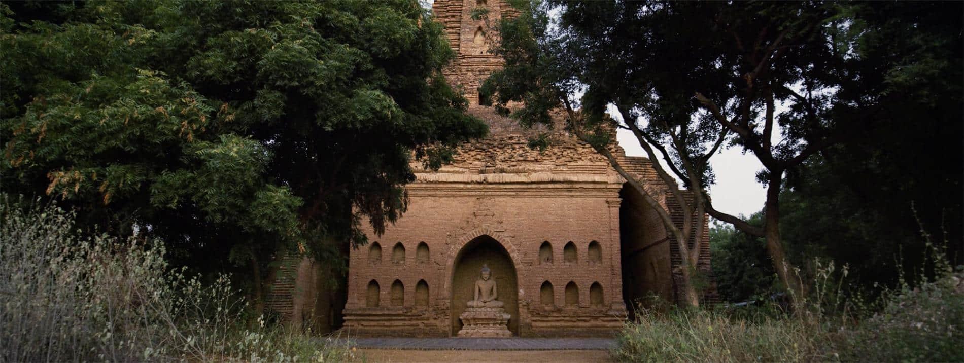 friedman guaardians of paradise pagoda